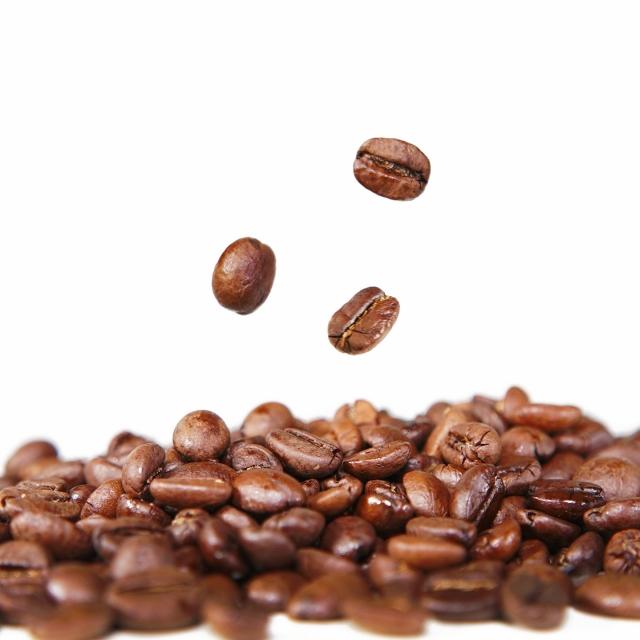 コーヒー成分